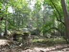 foret-fontainebleau-07