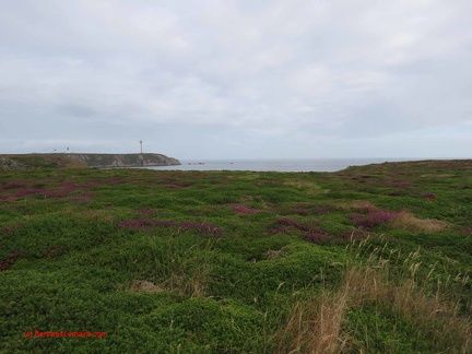 20190726 ouessant-12