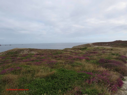 20190726 ouessant-17